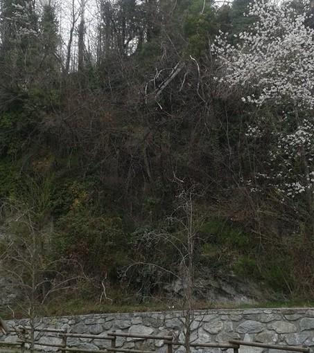 I resti erano stati rinvenuti in una zona impervia a Saumont