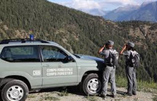 Premio di Legambiente al Corpo Forestale della Valle d'Aosta