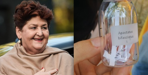 La ministra Teresa Bellanova (foto scaricata dal profilo Facebook) e il vasetto con un gruppo di vespe che contrastano la cimice nel giorno del lancio a Cherasco