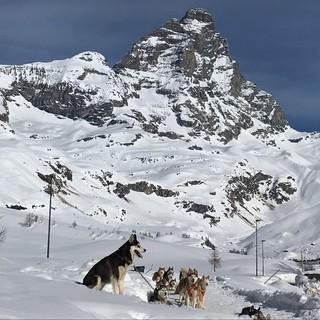 Due giovani alpinisti muoiono sul Cervino