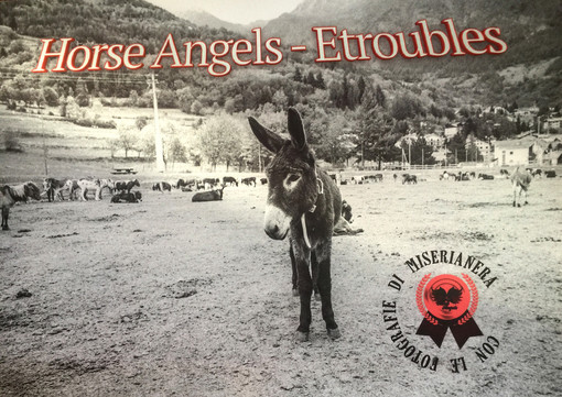Multa ma niente confisca per le vittime di Etroubles