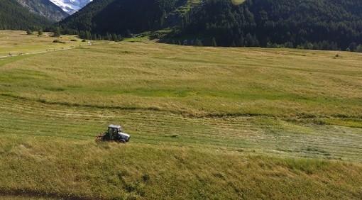 Seminario sulla sostenibilità ambientale delle aziende agricole