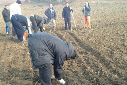 Prorogati permessi di soggiorno ai lavoratori stranieri del mondo agricolo
