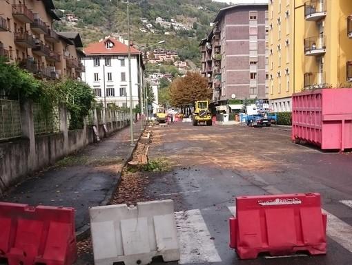 Aosta: Legambiente ai nuovi amministratori, 'più attenzione al verde cittadino'