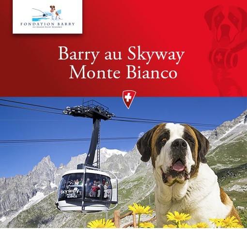 le Saint-Bernard au Val d'Aoste (montage photo RR)