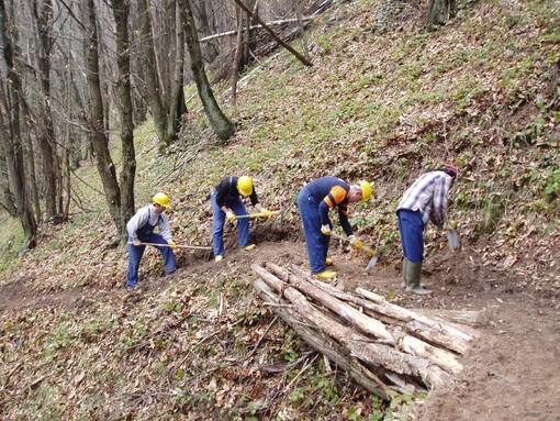 Entro fine marzo al via gli interventi e le assunzioni per cantieri forestali