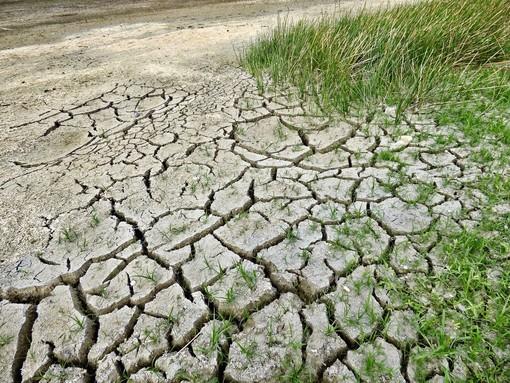 Il Governo italiano mantenga gli impegni per la tutela dell'ambiente e la transizione ecologica