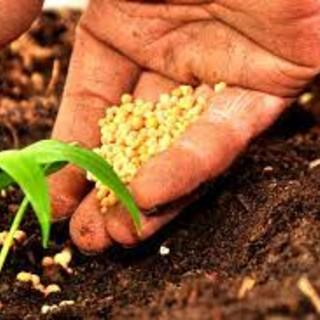 Valle d'Aosta chiede più spazio nel riparto dei fondi europei 2021/22 per l'agricoltura
