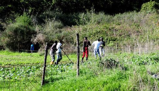 La Valle prova a rilanciare fattorie e agricoltura sociali