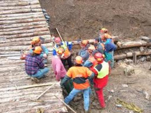 Sì all'assunzione di 10 operai forestali in Valle