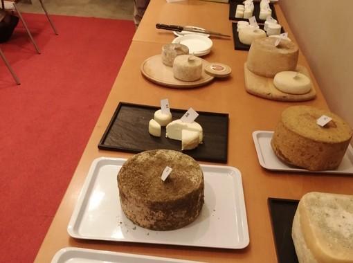 In concorso i migliori formaggi valdostani di capra e di pecora