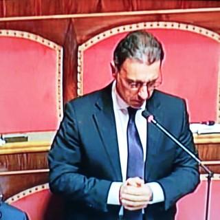 Il Senatore Laniece (Uv) 'Guai abbassare la guardia ora'