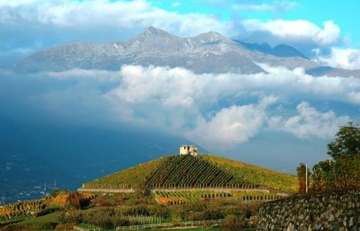 Il Cuvée Bois 2018 di Les Cretes miglior vino italiano in classifica comparata