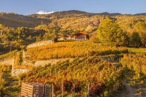 Les Granges circondata dalle vigne a Nus