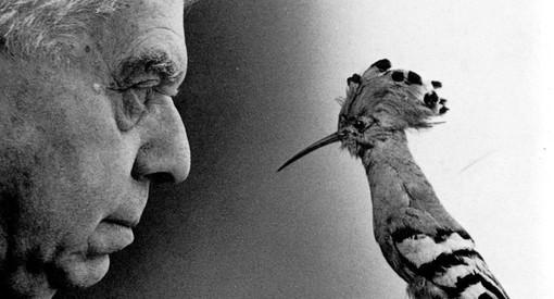 Eugenio Montale l'uomo che valutò al giusto il pensiero di Platone
