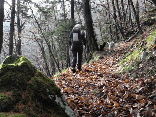 MONTAGNA VDA: Mont Avic Rando' - 1° tappa (Champdepraz)