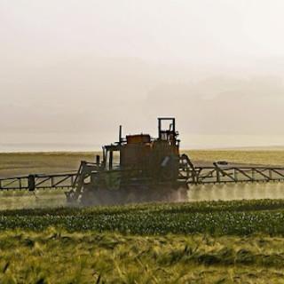 Italia tra i primi Paesi in Europa per il consumo di sostanze chimiche di sintesi per ettaro coltivato
