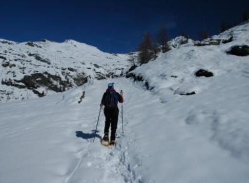 L'ESCURSIONE DELLA SETTIMANA: Rifugio Arp Brusson
