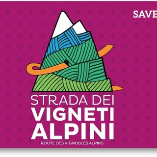 Concluso progetto Interreg 'Route des vignobles alpins'