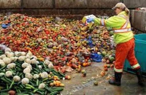 Le famiglie buttano via il 4,4% del cibo comprato in una settimana