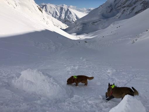 Valanga sul Gran Paradiso, ferito scialpinista