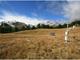 Torgnon, Valle d'Aosta. Sito di monitoraggio dell'assorbimento di CO2 da parte degli ecosistemi appartenente alle reti di ricerca Europee ICOS e eLTER (foto: Marta Galvagno, licenza CC4-BY)*
