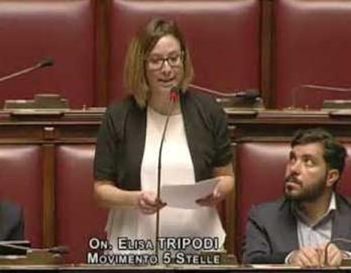Elisa Tripodi