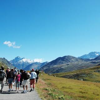 Première conférence transalpine en ligne sur le tourisme dans les Alpes