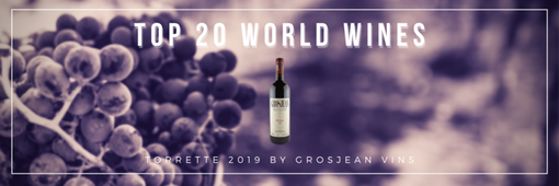 Il Torrette 2019 Grosjean tra i vini migliori al mondo al di sotto dei 20 euro