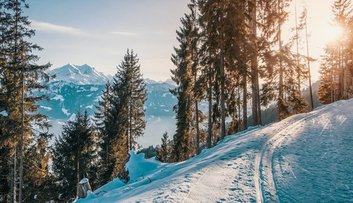 Vacanze sulla neve: tra sport, tanto relax e magia