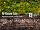 Mercoledì 3 marzo è il World Wildlife Day, quest'anno dedicato alle foreste